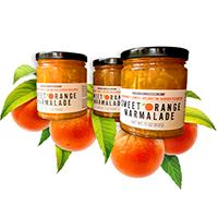 image of Orange Marmalade jar surrounded by oranges