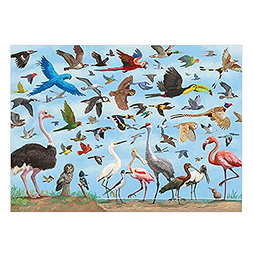 image of All The Birds Puzzle