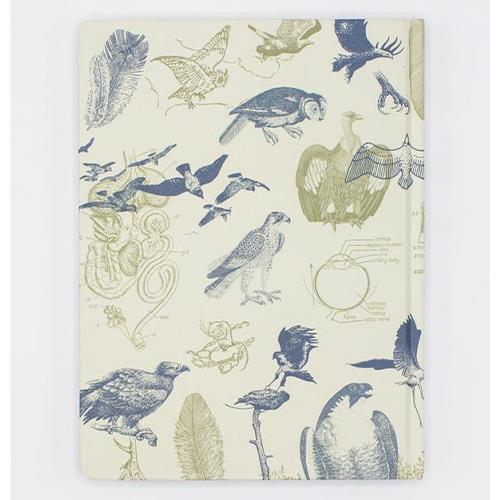 image of Birds of Prey Lined/Grid Journal back
