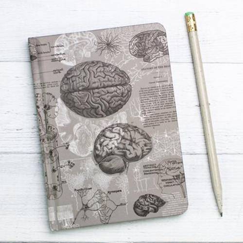 image of Brain Anatomy Mini Hardcover Dot Grid Journal cover