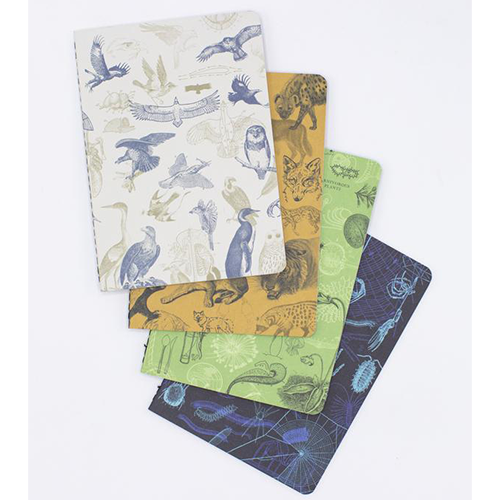image ofCarnivores 4-Pack Softcover Asst Journal covers