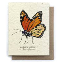 Image of Monarch Butterfly Card