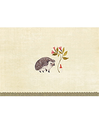 image of Hedgehog Boxed Note Cards