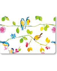 Watercolor Birds - Boxed Note Cards