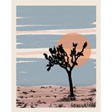 image of northstar print