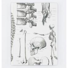 image of Skeleton Hardcover Lined/Grid Journal front