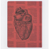 image of Anatomical Heart Hardcover Lined Journal back