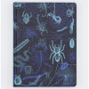 image of Arachnids + Myriapods Hardcover Lined Journal front