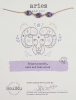 Image of Aries Amethyst Necklace Package