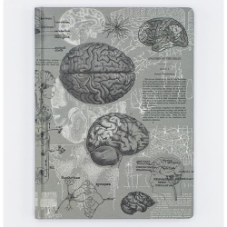 image of Brain Anatomy Hardcover Dot Grid Journal front