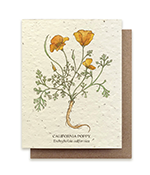Image of plantable card with California Orange Poppies on the Front