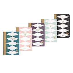 image of all Teal Wanderlust Travel Journals in Box Set